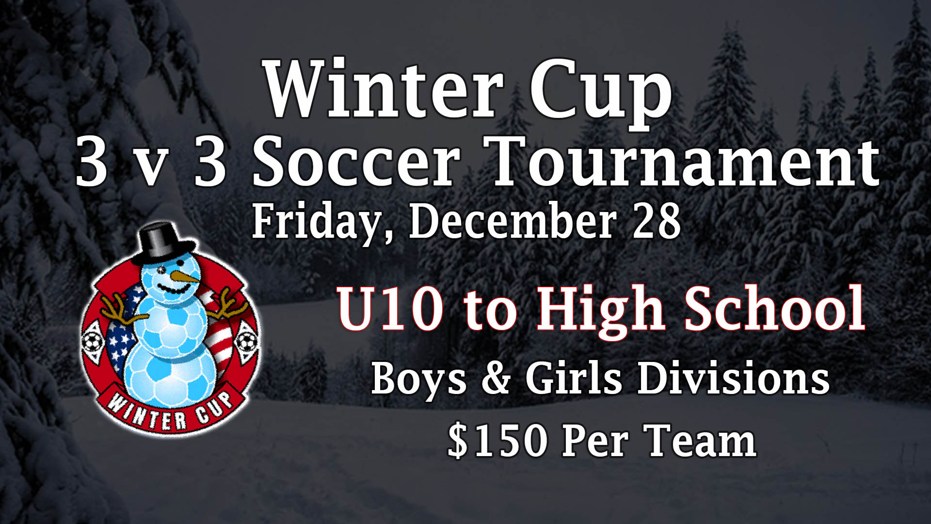 HOLIDAY CUP 5 v 5 v2 – web site
